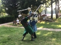 sca-heavy-fighting-barobrand-swordplay