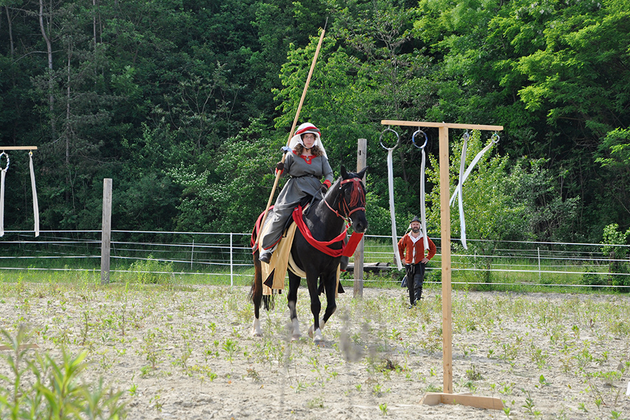 equestrian_02