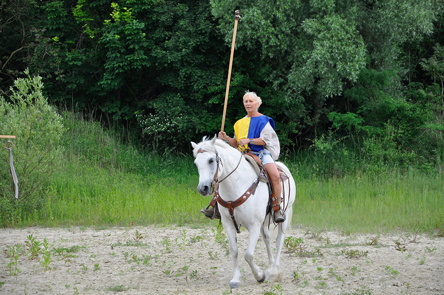 equestrian_04